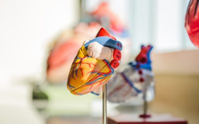 Congenital Heart Disease, what you need to know…now.